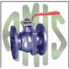 优势供应AMIS阀从DN 25到DN 300