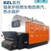 DZ系列蒸汽、热水锅炉